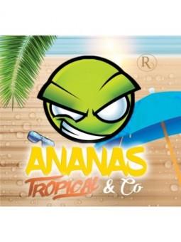 Concentré EXO Ananas Tropical & Co Revolute 10 ml